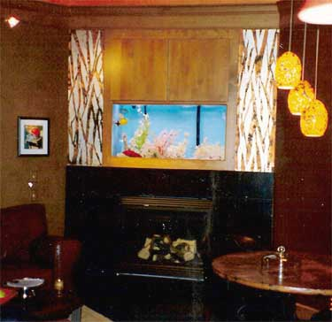 A crazy aquarium fireplace idea forums home for Fish tank fireplace