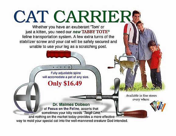 cat-carrier-joke-Tabby-Tote-domestic-animals-humor-pic.jpg