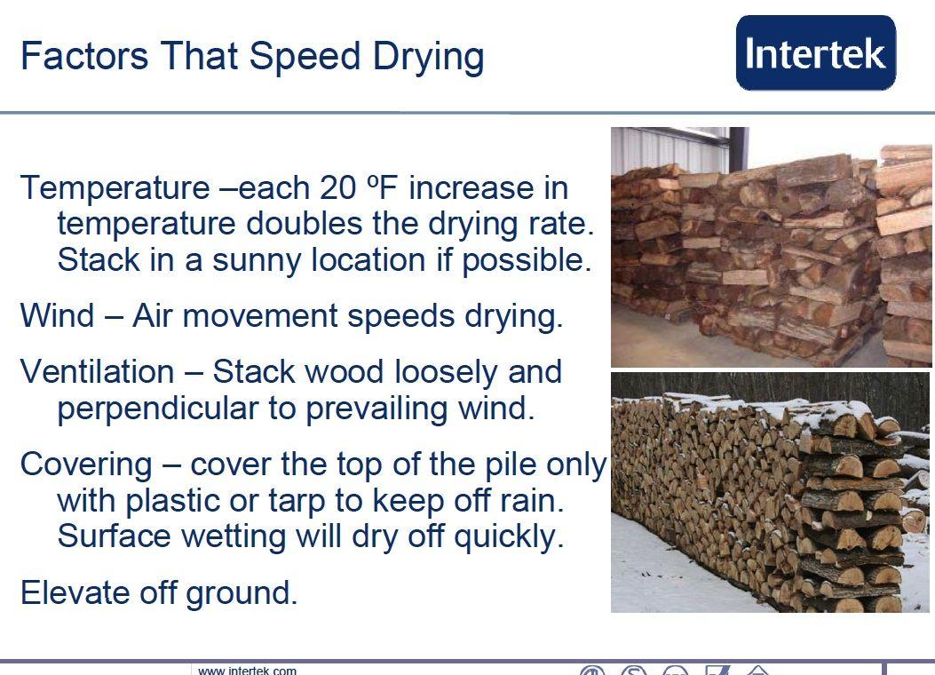 dryig firwood 1.jpg