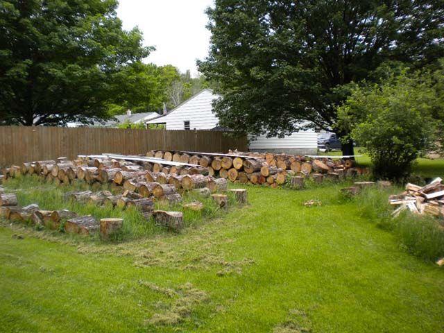 Firewood15.jpg