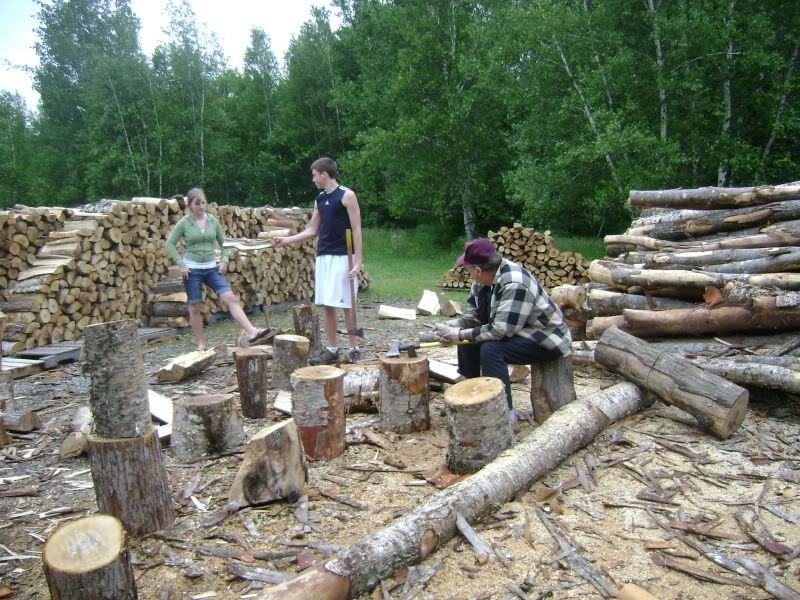 FirewoodDSC01300.jpg