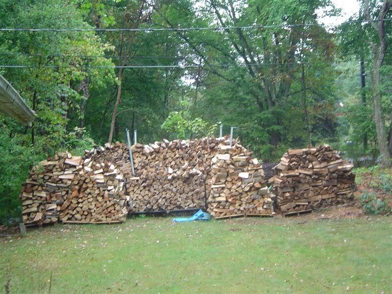 freewood.jpg