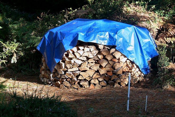 Holz2.jpg