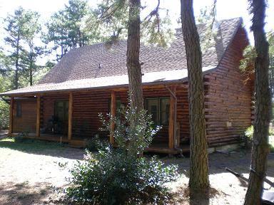 Woods 27 Ton Log Splitter