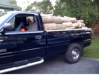 Loadofwood.jpg