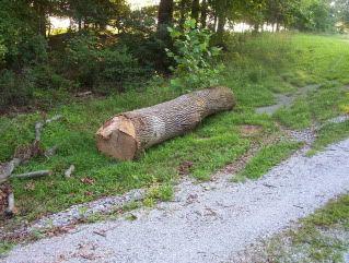 stovewood005.jpg