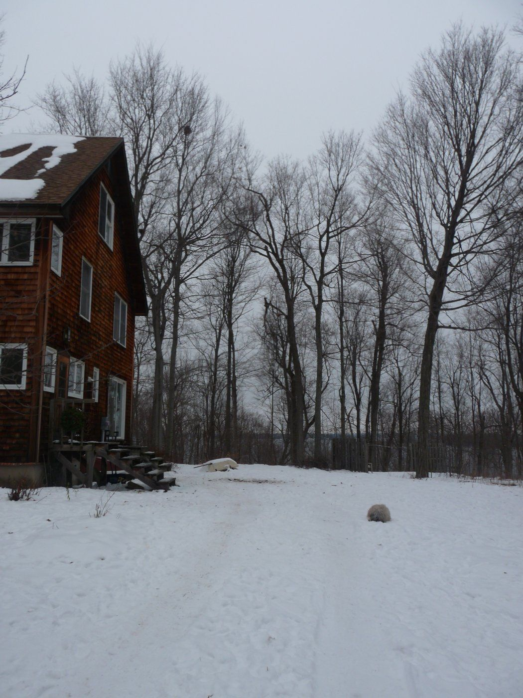 Winter 2010 086.JPG