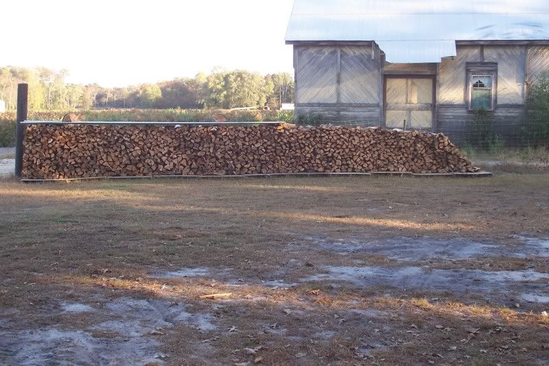 Wood031.jpg