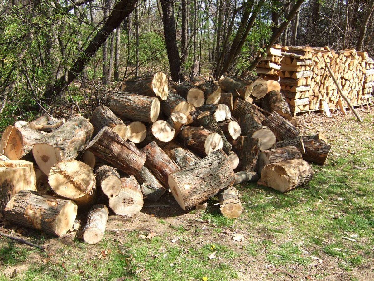 wood15.jpg