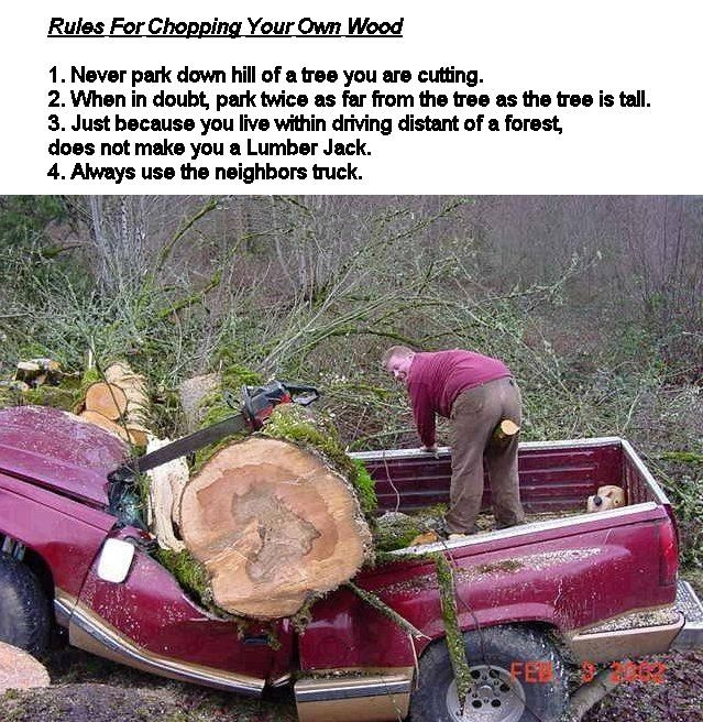 how to cut down a tree leaning the wrong way